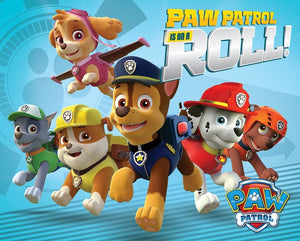 Pyramid Paw Patrol On a Roll Poster 50x40cm | Yourdecoration.nl
