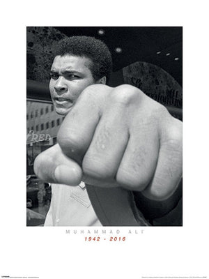 Pyramid Muhammad Ali Commemorative Punch Kunstdruk 60x80cm | Yourdecoration.nl