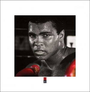 Pyramid Muhammad Ali Boxing Gloves Kunstdruk 40x40cm | Yourdecoration.nl