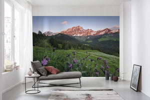 Komar Picturesque Switzerland Vlies Fotobehang 450x280cm 9-banen Sfeer | Yourdecoration.nl
