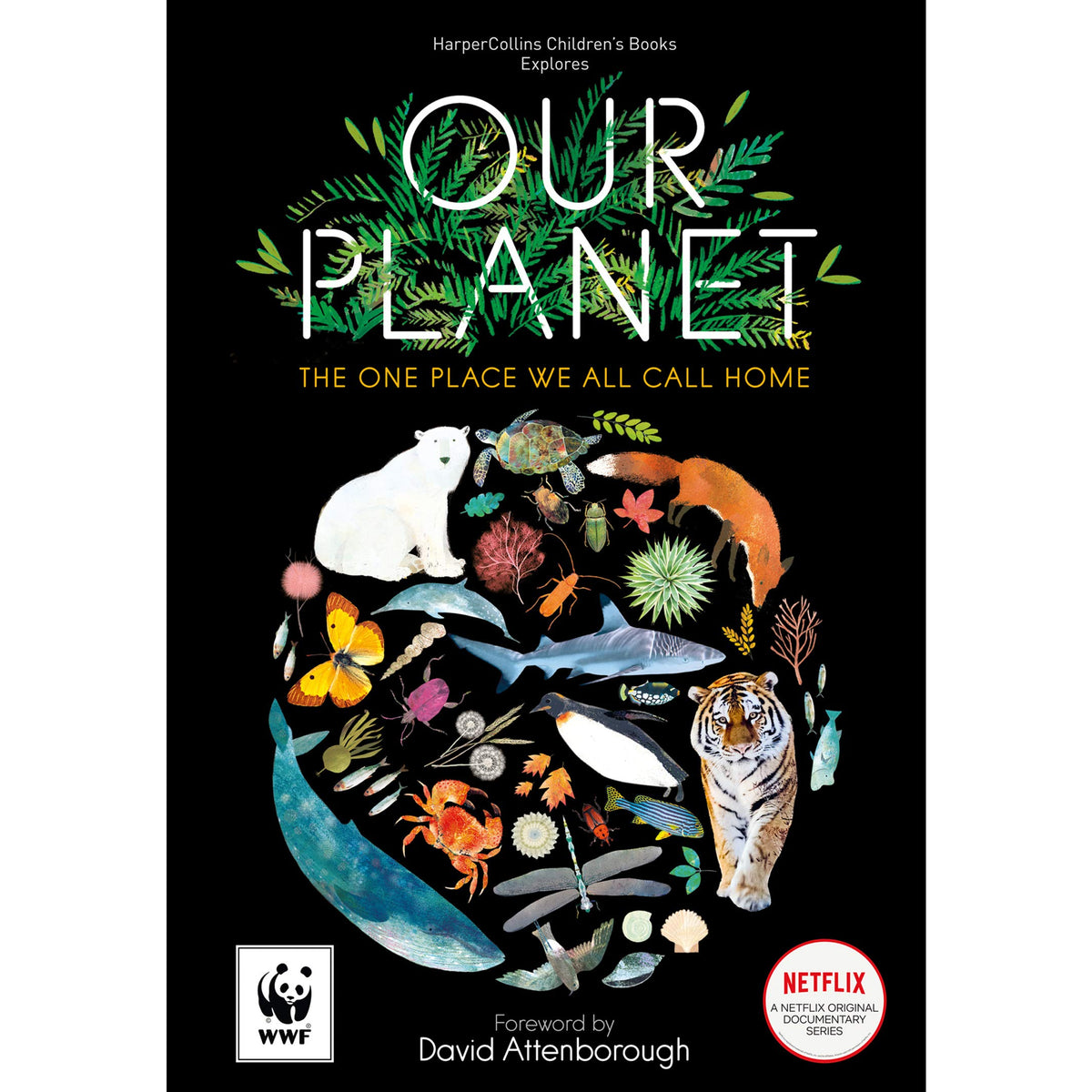 Our Planet cover
