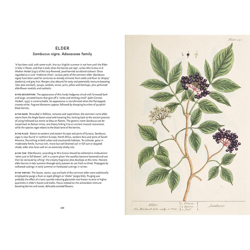 Pages from The Heritage Herbal