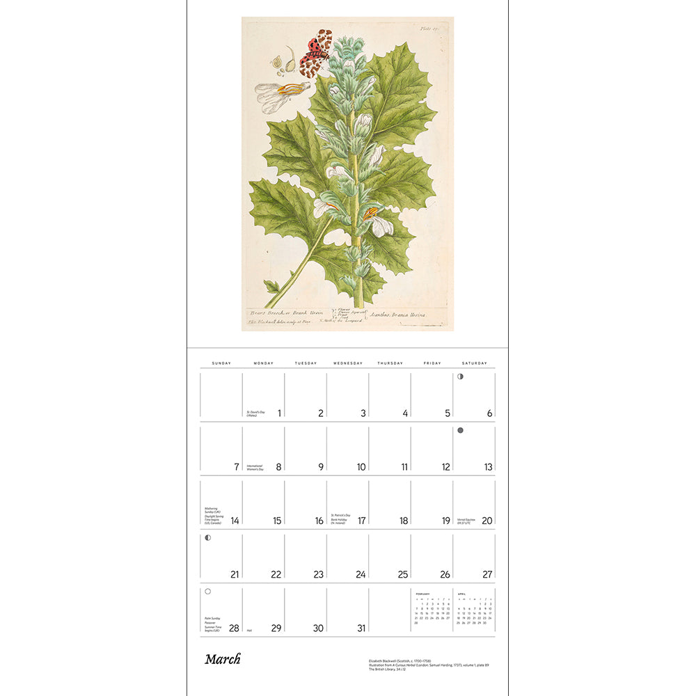 2021 Elizabeth Blackwell: A Curious Herbal Wall Calendar Inside Page