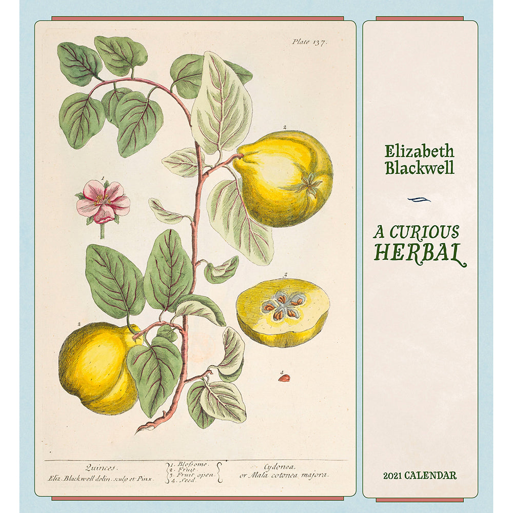 2021 Elizabeth Blackwell: A Curious Herbal Wall Calendar Cover