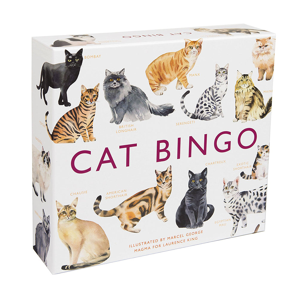 Cat Bingo Box Art Angled