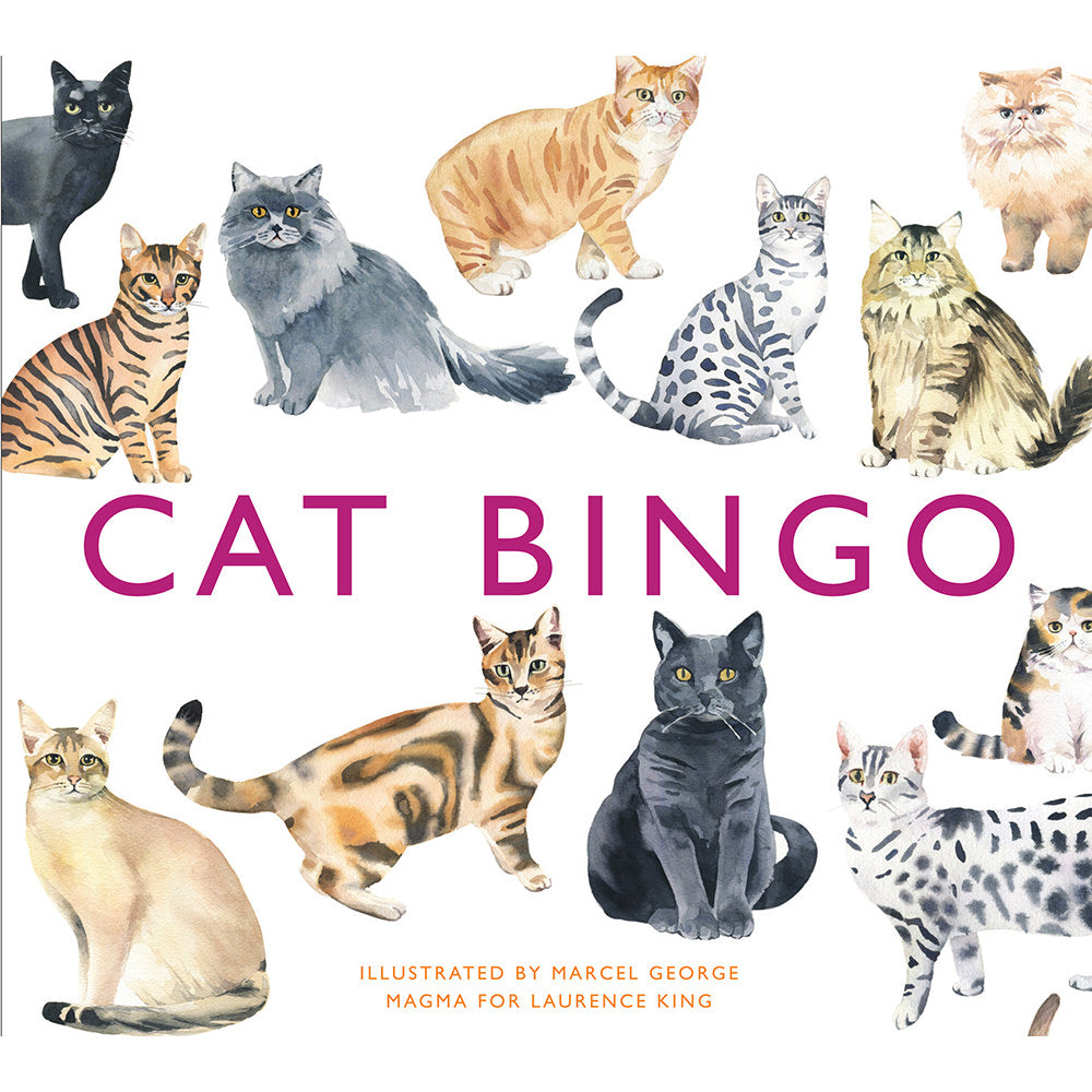 Cat Bingo Box Art