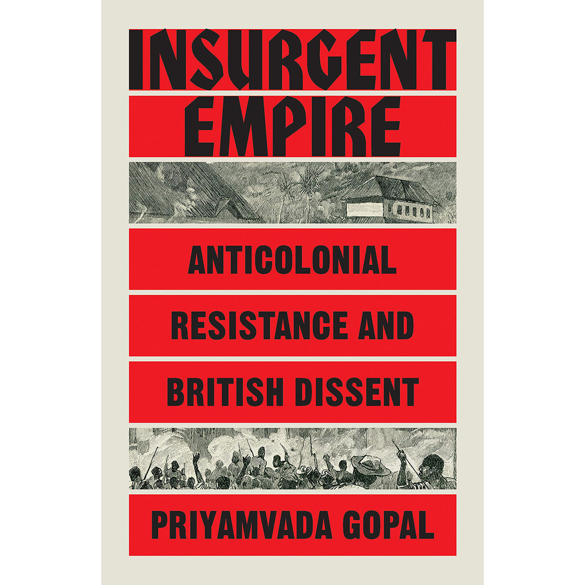 cover of Insurgent Empire: Anticolonial Resistance and British Dissent