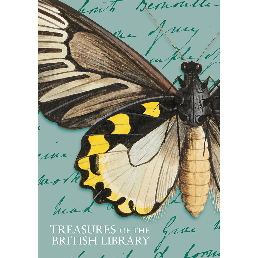 Treasures Butterfly A5 lined Notebook