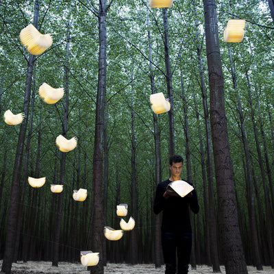 Lumio Lamps among trees