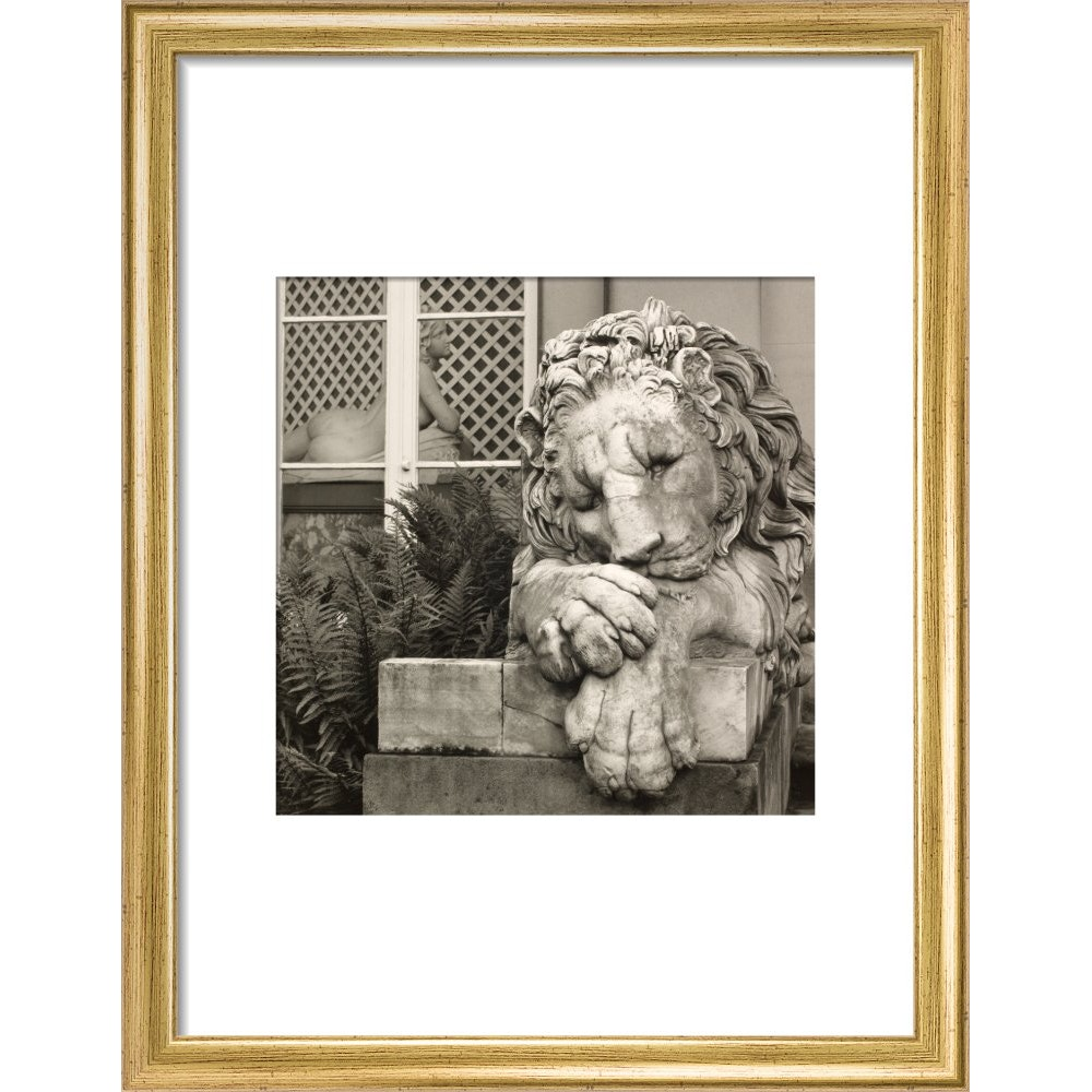 Chatsworth Lion print in gold frame