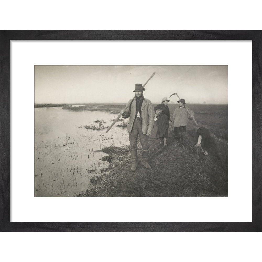 Coming Home from the Marshes print