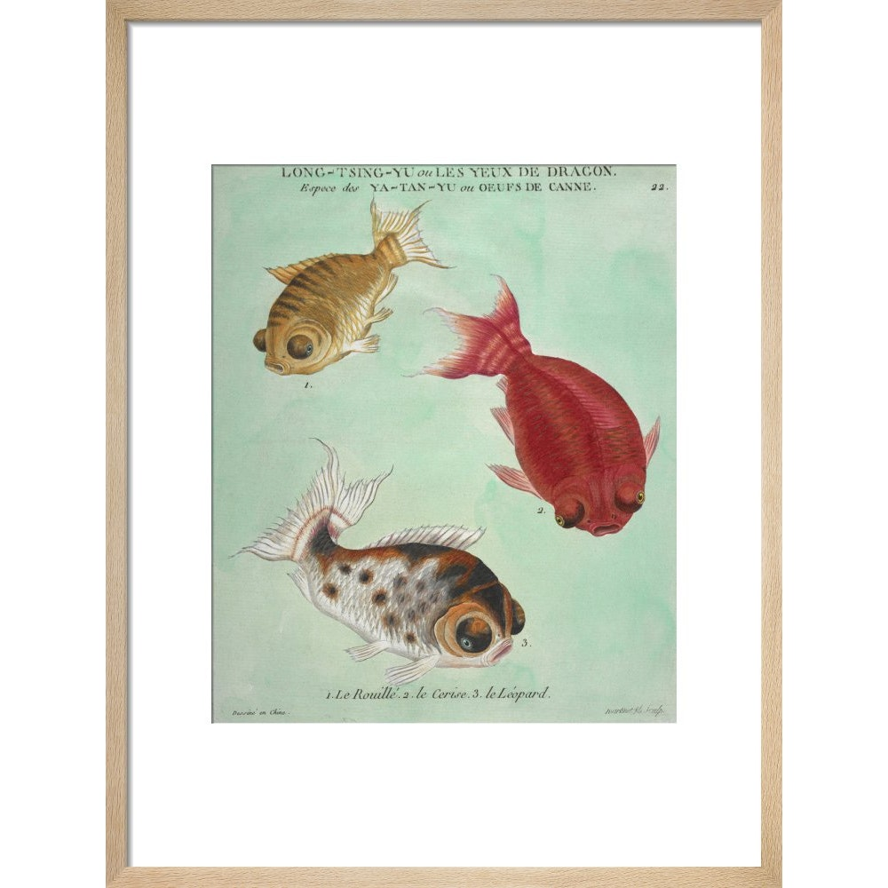 Long-Tsing-Yu trio of fish print in natural frame