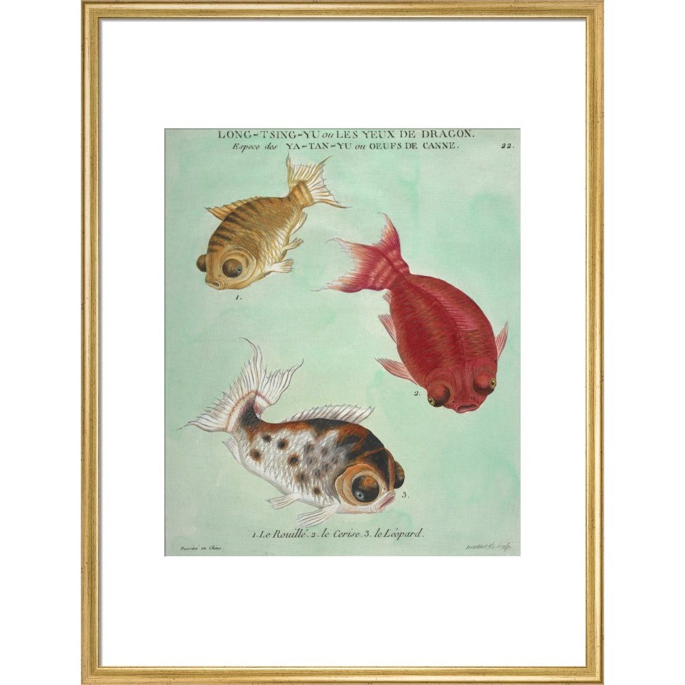 Long-Tsing-Yu trio of fish print in gold frame