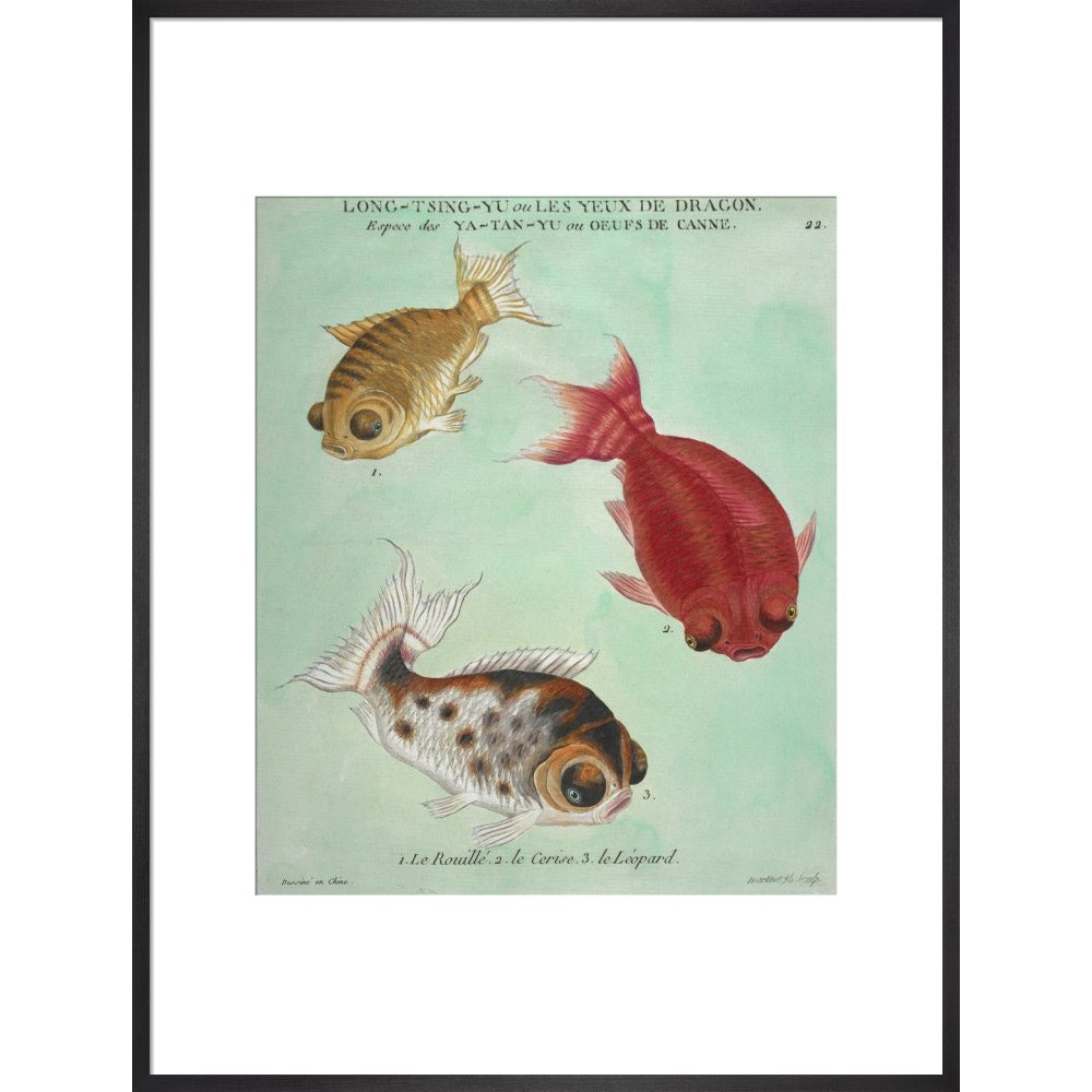 Long-Tsing-Yu trio of fish print in black frame