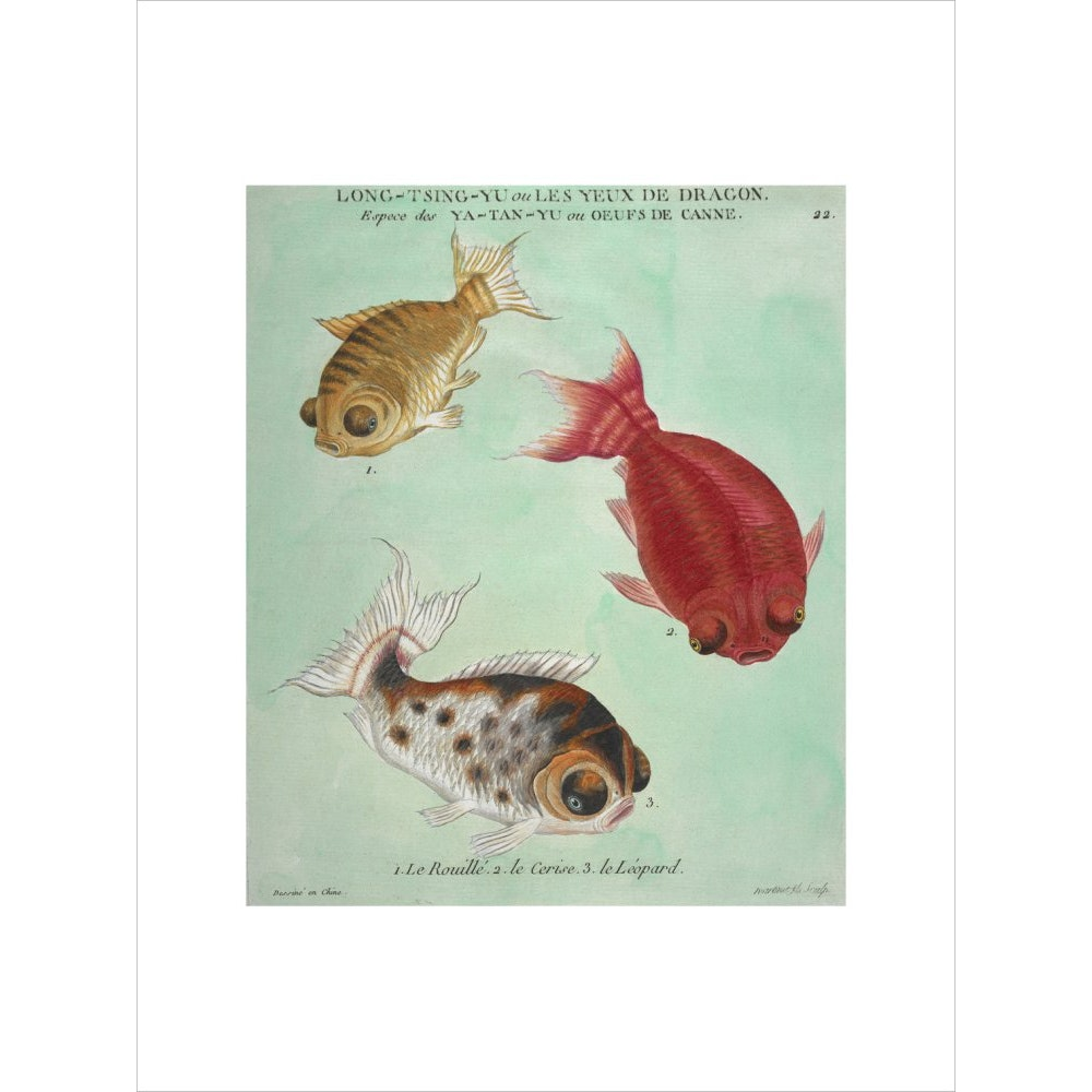 Long-Tsing-Yu trio of fish print unframed