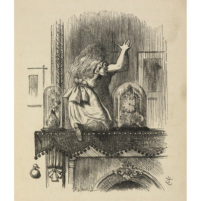 Through the looking-glass, and what Alice found there print