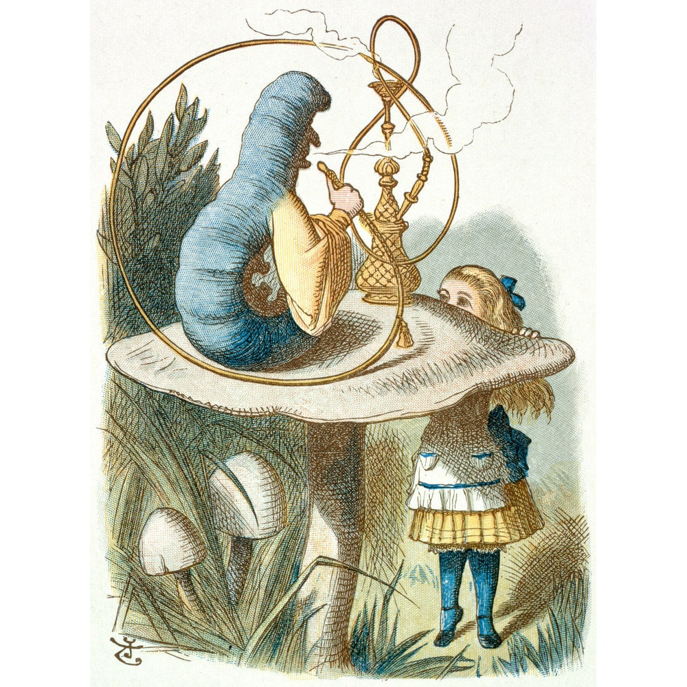 Alice meets the blue caterpillar print
