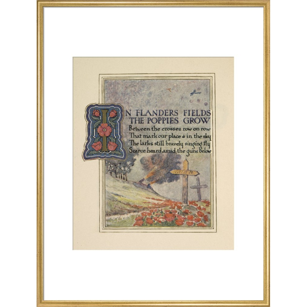 In Flanders fields print