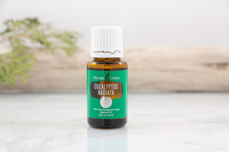Young Living Eucalyptus Radiata Essential Oil - 15ml