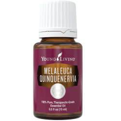 Young Living Melaleuca Quinquenervia Essential Oil - 15ml