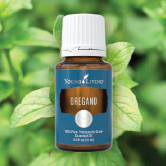 Young Living Oregano Essential Oil - 15ml