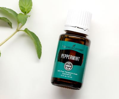 Young Living Peppermint Essential Oil - 15ml
