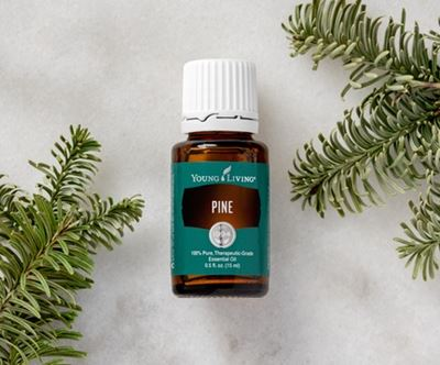 Young Living Pine Essential Oil - 15ml