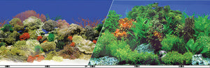 Double-sided Garden/carribbean Coral Background