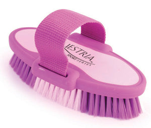 Equestria Sport Oval Body Brush