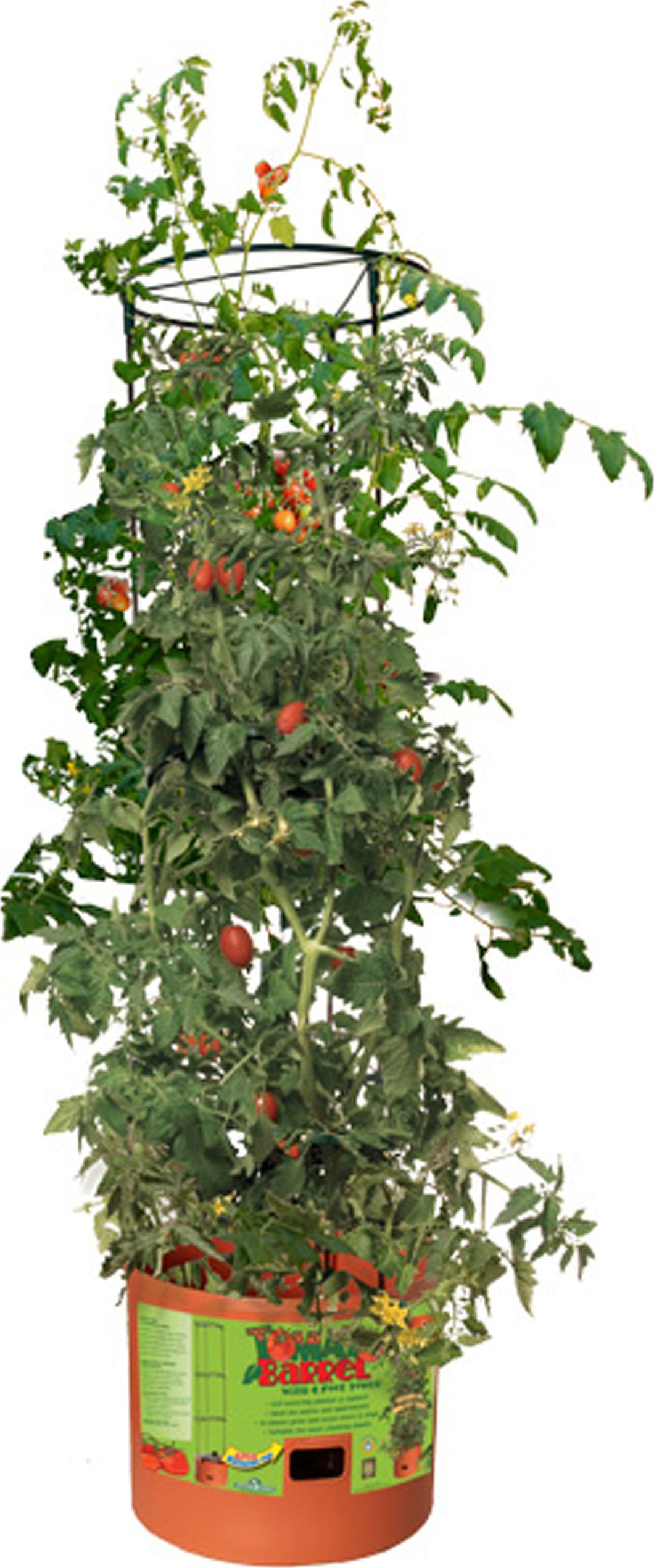Tomato Barrel With Tower