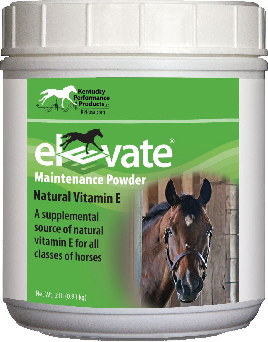 Elevate Maintenance Powder Supplement For Horses