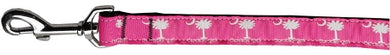 Carolina Girl Nylon Ribbon Dog Collars 1 wide 6ft Leash