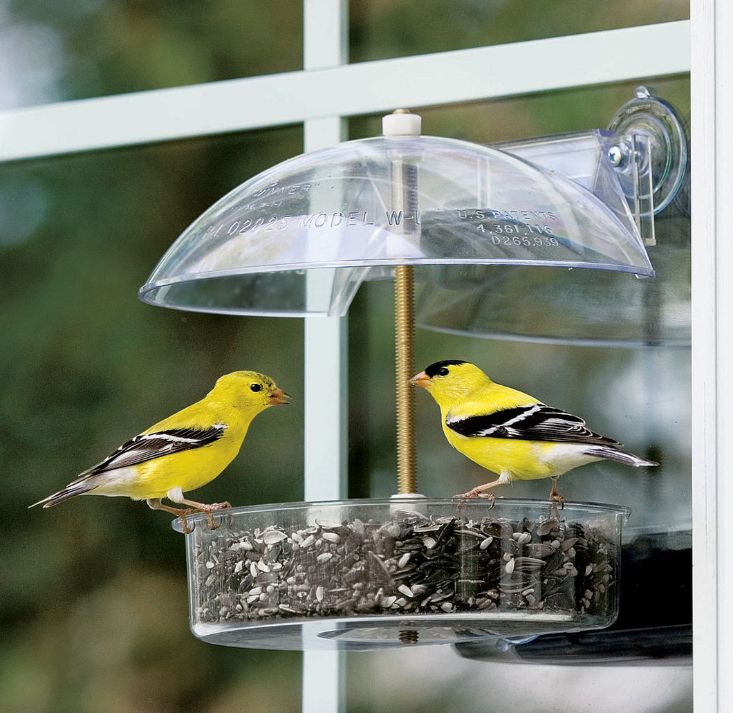 The Winner Multi-purpose Window Feeder
