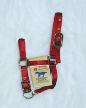 Load image into Gallery viewer, Adjustable Miniature Horse Halter