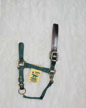 Load image into Gallery viewer, Adjustable Horse Halter With Leather Headpole