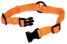 Load image into Gallery viewer, Adjustable Saferite Dog Collar