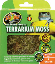 Load image into Gallery viewer, Terrarium Moss