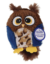 Load image into Gallery viewer, Hoots Owl Plush Squeaker Dog Toy