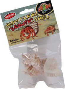 Hermit Crab Growth Shell