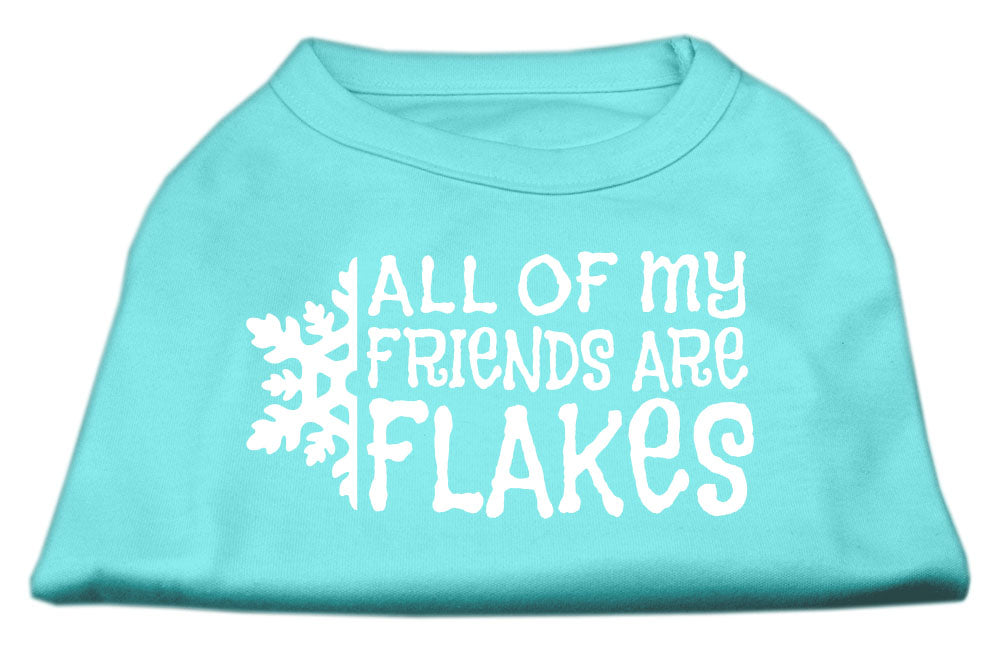 All my friends are Flakes Screen Print Shirt Aqua XL (16)