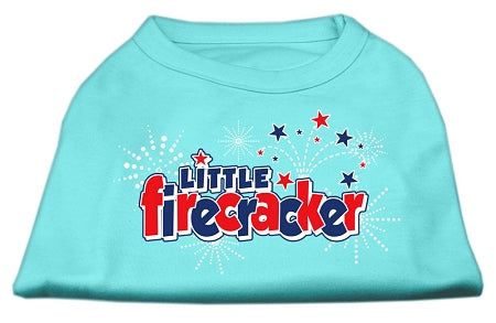 Little Firecracker Screen Print Shirts Aqua M (12)