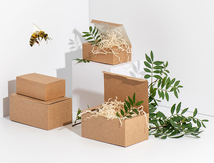 Eco-friendly packaging used by Manuka Honey of NZ and a bee.