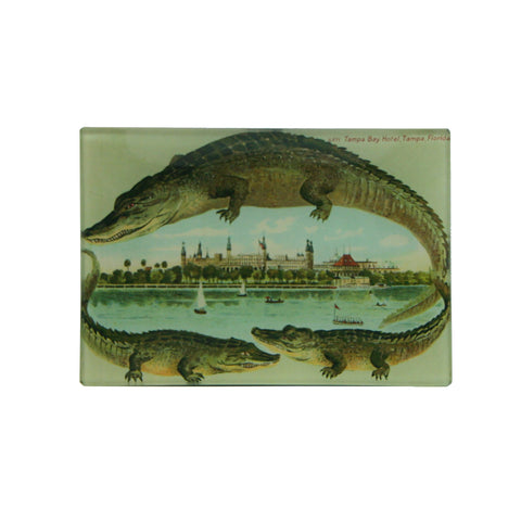 Tampa Bay Hotel Alligator Postcard Tray