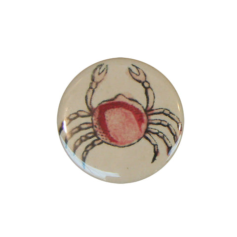 Button Mirror - Cute Crab