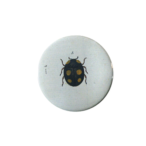 Button Mirror - Ladybird