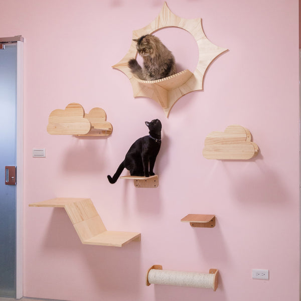 interior deco idea for cat room