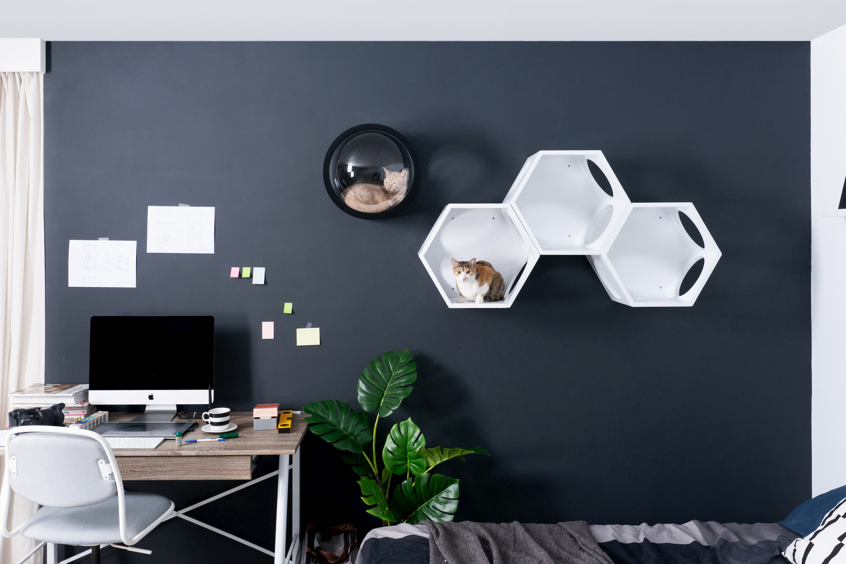 Arbre A Chat Mural Design black & white – myzoo-fr
