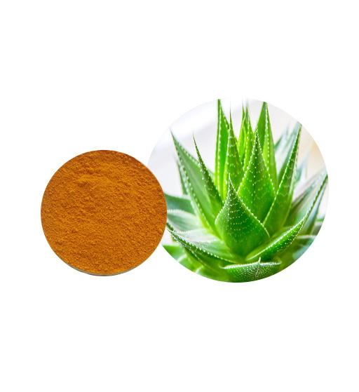 Aloe Vera Extract Bulk Herbal Extracts Manufacturer and Supplier - Laybio Natural
