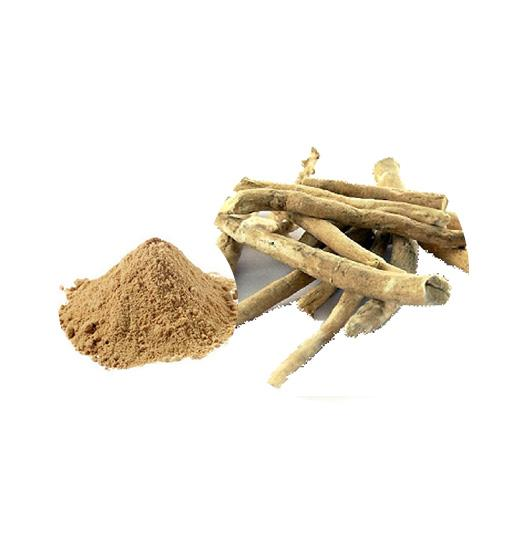 Ashwagandha Extract Bulk Herbal Extracts Manufacturer and Supplier - Laybio Natural