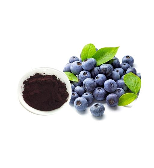 Bilberry Extract Bulk Herbal Extracts Manufacturer and Supplier - Laybio Natural
